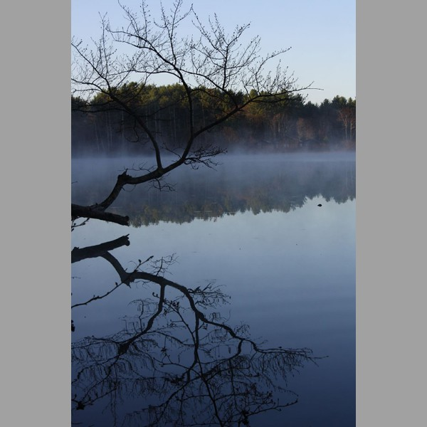Otter Pond Reflection